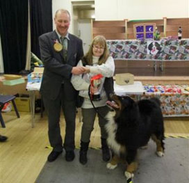 Gerry Hill with Luka winner of Best Bernese of the Day at the Central Bernese Mountain Dog Club Christmas Fun Day 2013